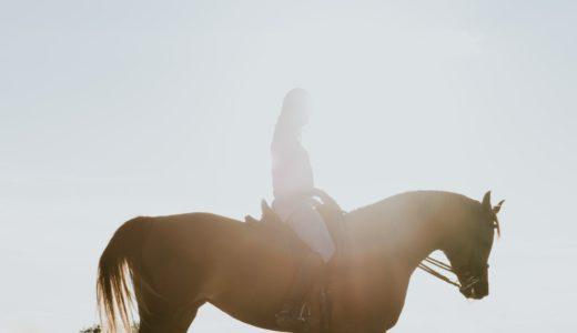 「落ち着けよ」って英語でなんていう?!  hold one's horses の意味・語源とは