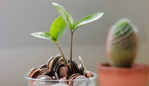 「金のなる木」って英語でなんていう?!  cash cow / money tree の意味とは